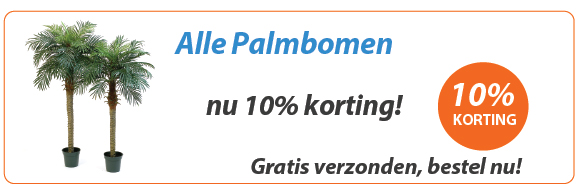 Palmboom Actie