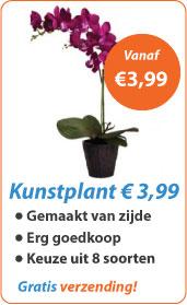 Kunstplant vanaf 3,99
