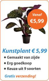 Kunstplant vanaf 5,99