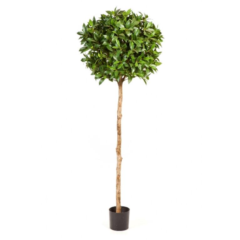 Kunstplant Laurier Bal Deluxe 140 cm