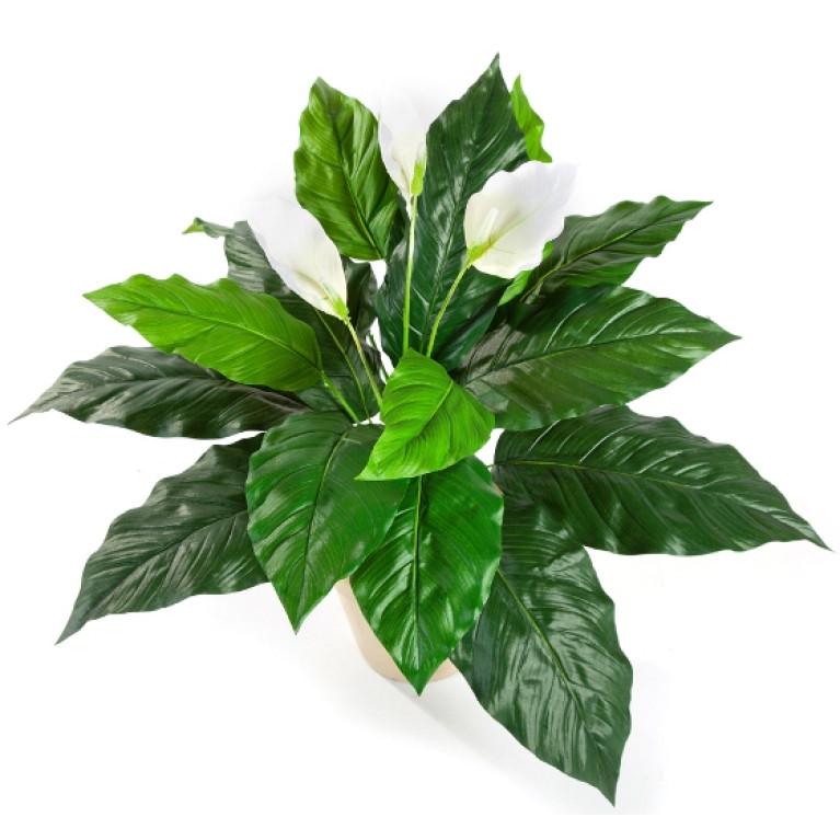 Kunstplant Lepelplant Wit 70 cm