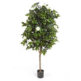Kunstplant Camelia Wit 170 cm