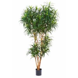 Kunstplant Dracaena Reflexa 210 cm