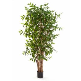Kunstplant Dracaena Surculosa 210 cm