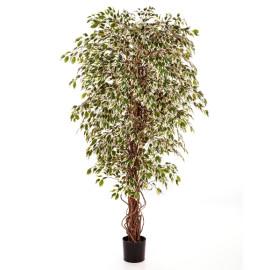 Kunstplant Ficus Hawaiian Mixed 210 cm