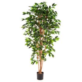 Kunstplant Ficus Nitida 210 cm