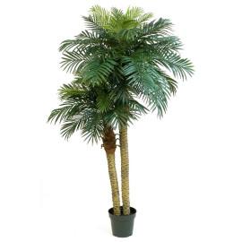 Kunstplant Phoenix Palmboom Double 210 cm