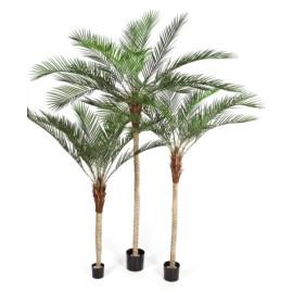 Kunstplant Phoenix Palm Plastic 180-240-210 cm