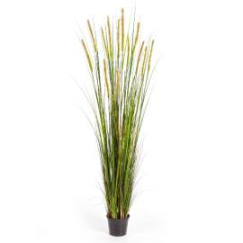 Kunstplant Vossenstaart Gras Groen 180 cm