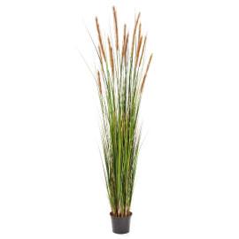 Kunstplant Vossenstaart Gras Bruin 180 cm