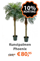 Kunstplant Phoenix