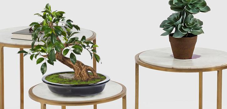 Overige Kunstplanten