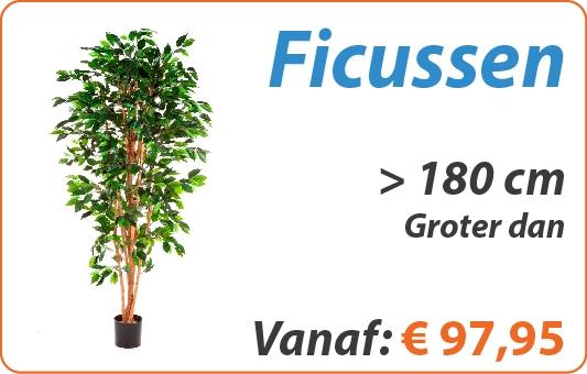 Ficus kunstplanten groter dan 180 cm