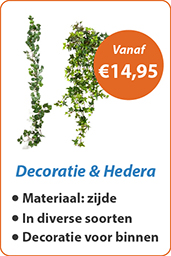 Decoratie & Hedera
