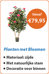 Planten met Bloemen