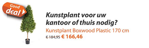 Kunstplant Boxwood Plastic 140 cm